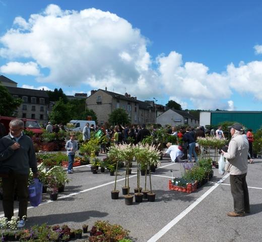 Flower market Eymoutiers