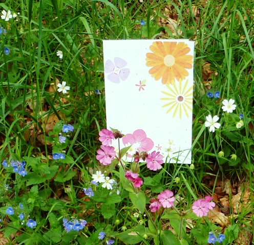 Plantable flower seed card