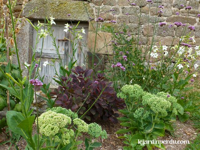 Le Jardin Perdu - Barn garden