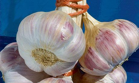 l'ail rose, Edenrose garlic