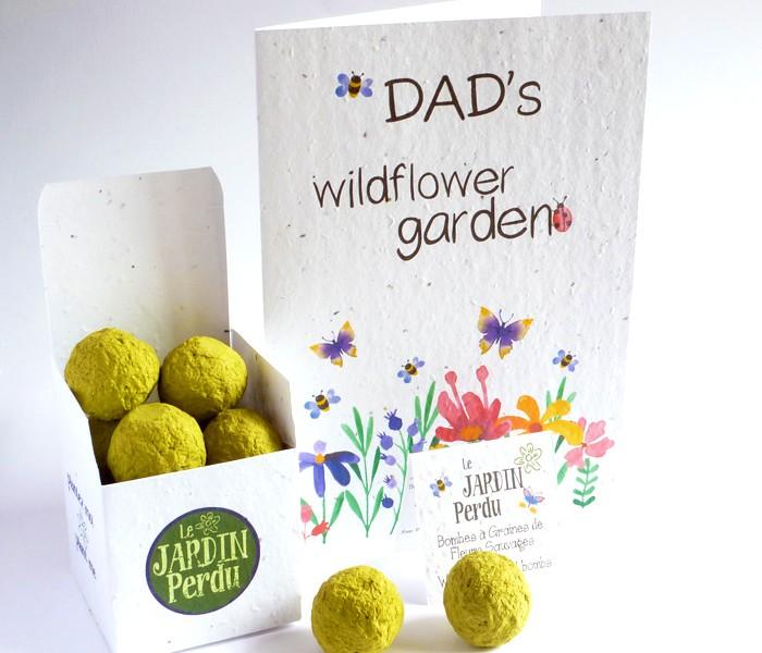 wildflower gift pack