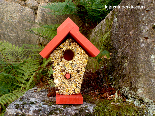 Haute Cuisine eco-friendly bird seed feeder