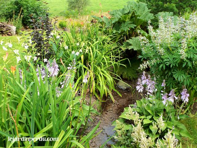 Le Jardin Perdu - Stream border