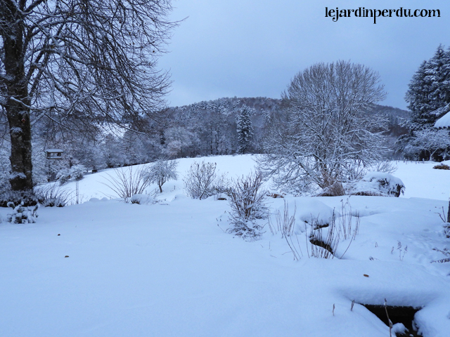 Le Jardin Perdu snow 1st December 2017