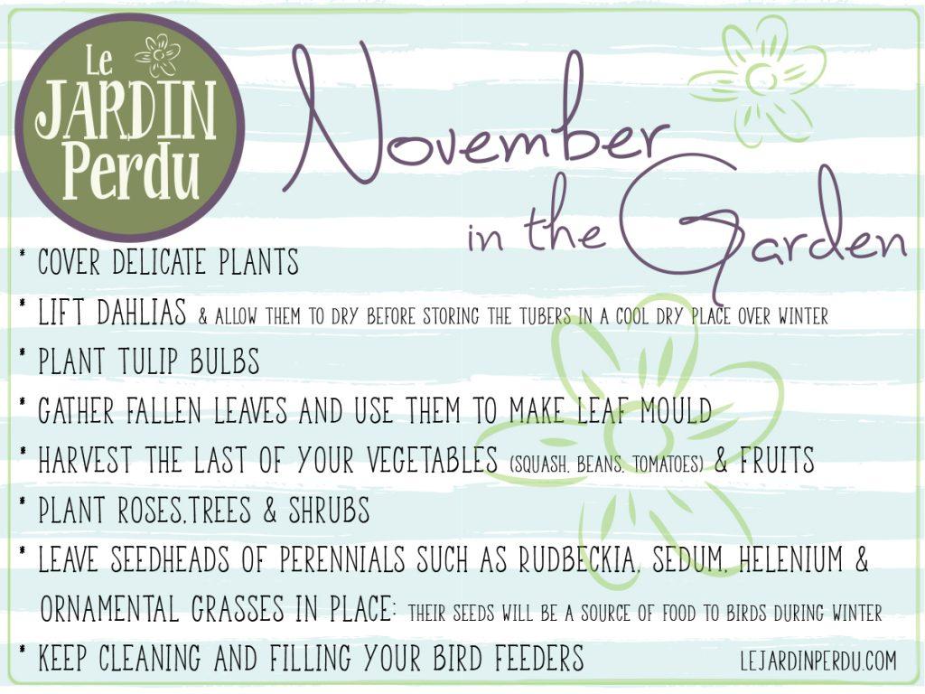 November gardening jobs